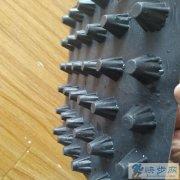 北京塑料排水板价格 疏(蓄)水板生产厂家 直销供应