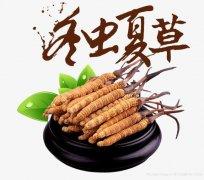 北京市回收冬虫夏草之礼品藏干草克价218元